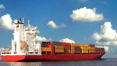 navio 1 1 390x220 - Reduzir a velocidade dos navios pode salvar a vida de baleias e golfinhos