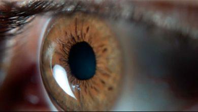 olho 1 390x220 - Smartphones e computadores aceleram envelhecimento da visão