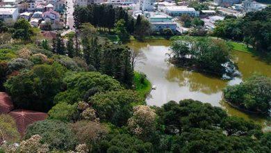 parque pinheiros 390x220 - Projeto vai estudar peixes e tartarugas de lago em Farroupilha