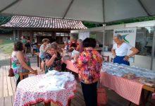 21590 220x150 - Grupo de mulheres apresenta cuca de rosas em Festa de Sapiranga