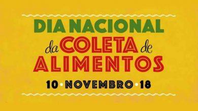 Dia Nacional da Coleta de Alimentos 390x220 - Dia Nacional da Coleta de Alimentos é neste sábado