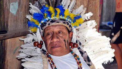 caigangue 390x220 - Caingangues compartilharam experiências da medicina tradicional indígena em Porto Alegre