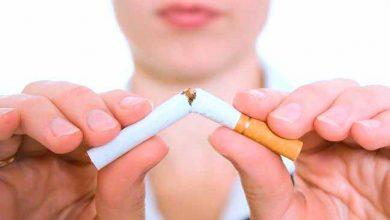 cigar 1 390x220 - Hábitos saudáveis ajudam a prevenir o câncer