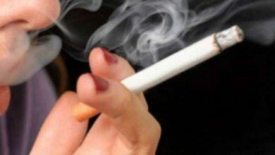 cigar 390x220 - 82% dos fumantes trocariam cigarro por produtos de menor risco à saúde