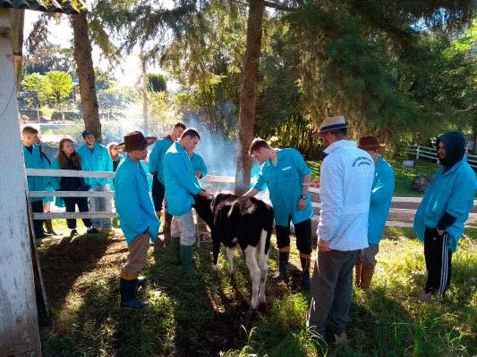 leitei - Curso de bovinos de leite no Cetanp está com vagas abertas