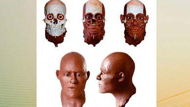 luzia 02 390x220 - DNA antigo conta nova história sobre o povo de Luzia
