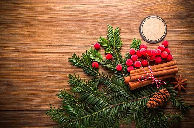 natal 2 - Gabi Aude dá dicas de decoração de Natal