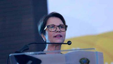 tereza cristina 390x220 - Bolsonaro confirma Tereza Cristina para o Ministério da Agricultura