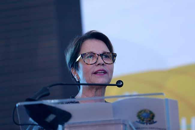 tereza cristina - Bolsonaro confirma Tereza Cristina para o Ministério da Agricultura