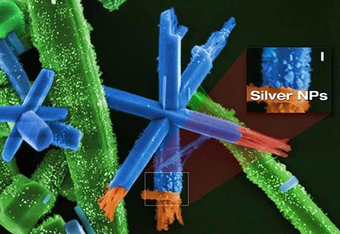 Bactericidas existentes atualmente são usados em embalagens de alimentos órteses e materiais médico hospitalares por exemplo. - Técnica pode criar bactericidas de alto desempenho e fácil fabricação