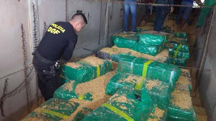 apreensao de maconha ms 0 - Polícia do Mato Grosso do Sul apreende mais de 10 toneladas de maconha