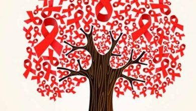 hiv 390x220 - O Brasil em alerta no combate à AIDS
