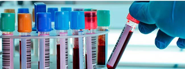 medul - Semana de Mobilização Nacional para Doação de Medula Óssea inicia hoje (14)