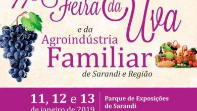 Feira da Uva 390x220 - Feira da Uva e Agroindústria Familiar inicia dia 11 em Sarandi