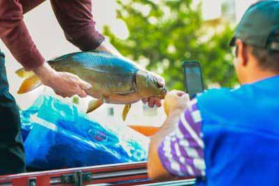 Feira do Peixe Vivo de Caxias do Sul 1 - Feira do Peixe Vivo ocorre na próxima sexta-feira em Caxias do Sul
