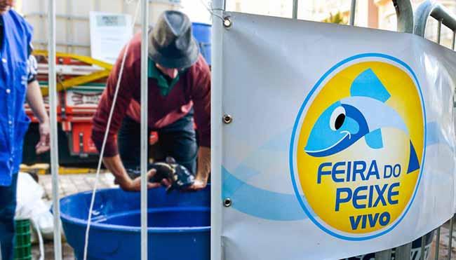 Feira do Peixe Vivo de Caxias do Sul - Feira do Peixe Vivo ocorre na próxima sexta-feira em Caxias do Sul