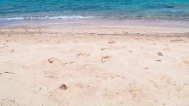 areia 390x220 - Os perigos na areia e dentro do mar