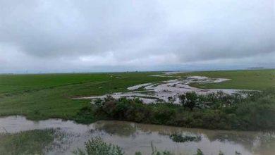 chuva rs 390x220 - RS: em uma semana chove mais de 600mm