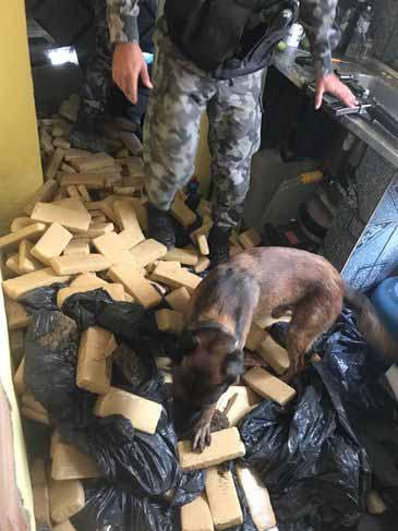 drogas em favela no Rio - Polícia faz operação em favela no Rio e apreende 400 quilos de drogas