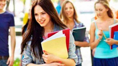 edu 390x220 - Entenda a diferença entre bacharelado, licenciatura e curso tecnológico