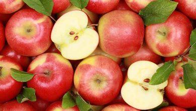 higienizar as frutas maçãs 390x220 - Sugestões práticas para higienizar as frutas de forma eficaz