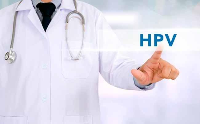 hpvtran - Mais de 80% da população sexualmente ativa tem HPV