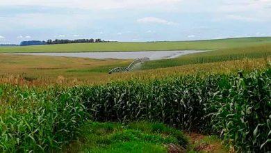 irrigação fepam 390x220 - RS: regularização de licenciamentos ambientais de irrigação se encerra dia 17/02