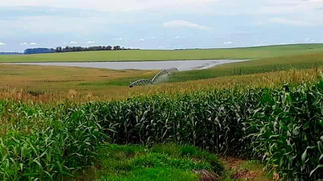 irrigação fepam - RS: regularização de licenciamentos ambientais de irrigação se encerra dia 17/02