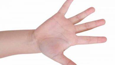 maossw 390x220 - I Encontro Científico da área de cirurgia da mão acontece em Santa Catarina