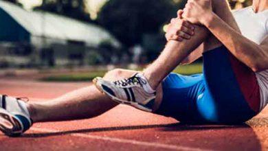 muscatle 390x220 - O funcionamento das fibras musculares