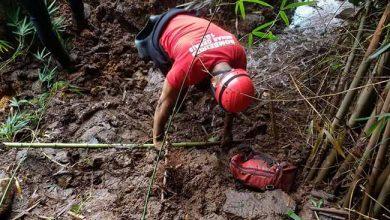 13º dia de buscas em Brumadinho 390x220 - Equipes já estão em campo no 13º dia de buscas em Brumadinho