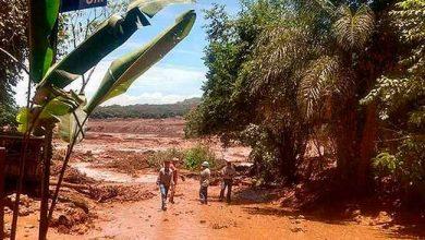 Equipes ainda buscam 160 desaparecidos em Brumadinho 390x220 - Equipes ainda buscam 160 desaparecidos em Brumadinho