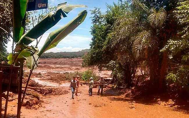 Equipes ainda buscam 160 desaparecidos em Brumadinho - Equipes ainda buscam 160 desaparecidos em Brumadinho