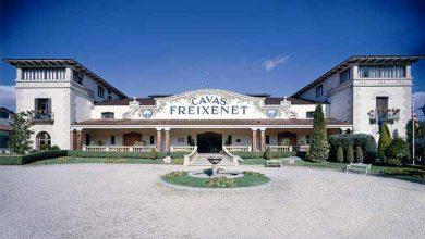 Freixenet uma das maiores produtoras de Cava no mundo 390x220 - Espumante Freixenet é a marca mais importada no Brasil em 2018