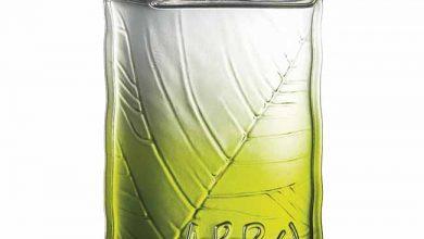 OBoticario Arbo 390x220 - O Boticário lança Arbo Reserva