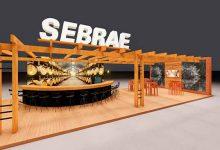 Sebrae RS festa uva 220x150 - Sebrae RS terá programação variada na Festa da Uva