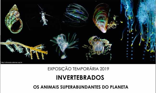 ceclimar - Exposição sobre invertebrados é destaque no Ceclimar, em Imbé