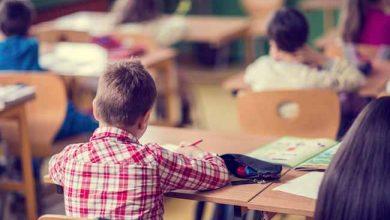 educ 2 390x220 - Bolsa Família: frequência escolar de beneficiários ultrapassa 90%