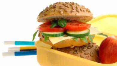 escol 390x220 - Dicas nutricionais de lanches saudáveis para a criançada