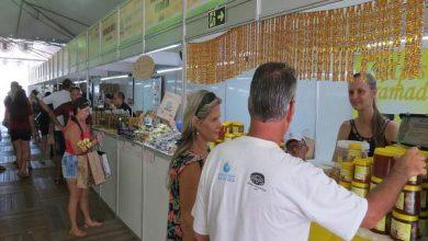 feira colonia torres 390x220 - Feira Estadual da Agricultura Familiar acontece em Torres este fim de semana