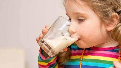 alimbb 390x220 - São Leopoldo e Novo Hamburgo participam de estudo nacional sobre nutrição infantil