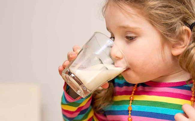 alimbb 650x405 - São Leopoldo e Novo Hamburgo participam de estudo nacional sobre nutrição infantil