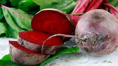 bet876my 390x220 - Nutricionista fala sobre os benefícios nutricionais da beterraba