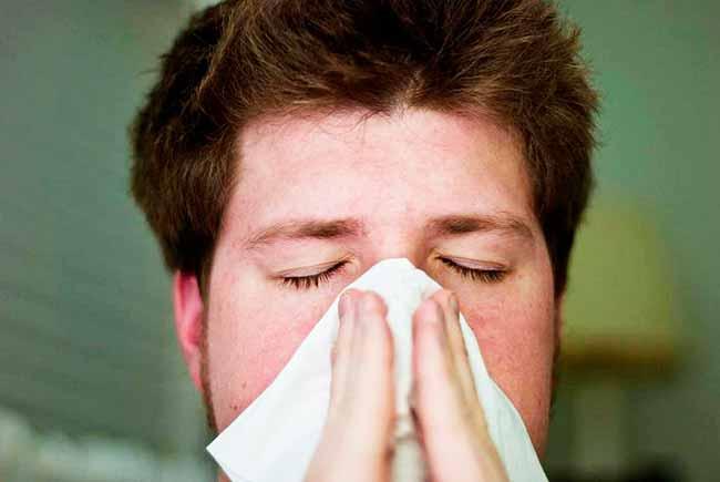 gripe 0 - OMS apresenta estratégia para controle da gripe no mundo