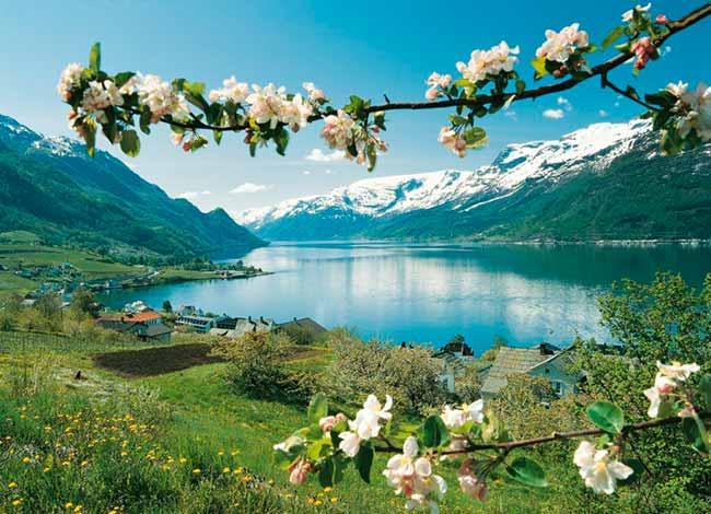 noru - As belezas da primavera na Noruega