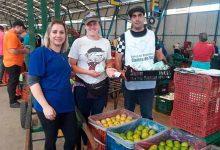 Ceasa Caxias do Sul 220x150 - Lembranças de Páscoa para agricultores da Ceasa Serra