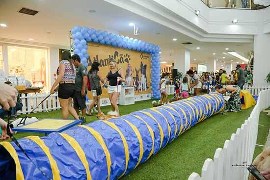 Evento pet do Atlântico Shopping 1 - Evento pet do Atlântico Shopping trará feira de adoção, cãocurso e desfile de cães