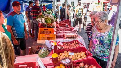 Feira 390x220 - Sábado é dia de Feira do Alimento Saudável em São Leopoldo