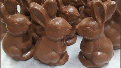 coelhinhos de chocolate para a páscoa 390x220 - Procon de São Leopoldo confere preços de itens para Páscoa