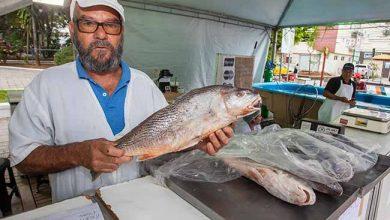 feira peixe canoas 390x220 - Começa hoje a 27ª Feira do Peixe de Canoas